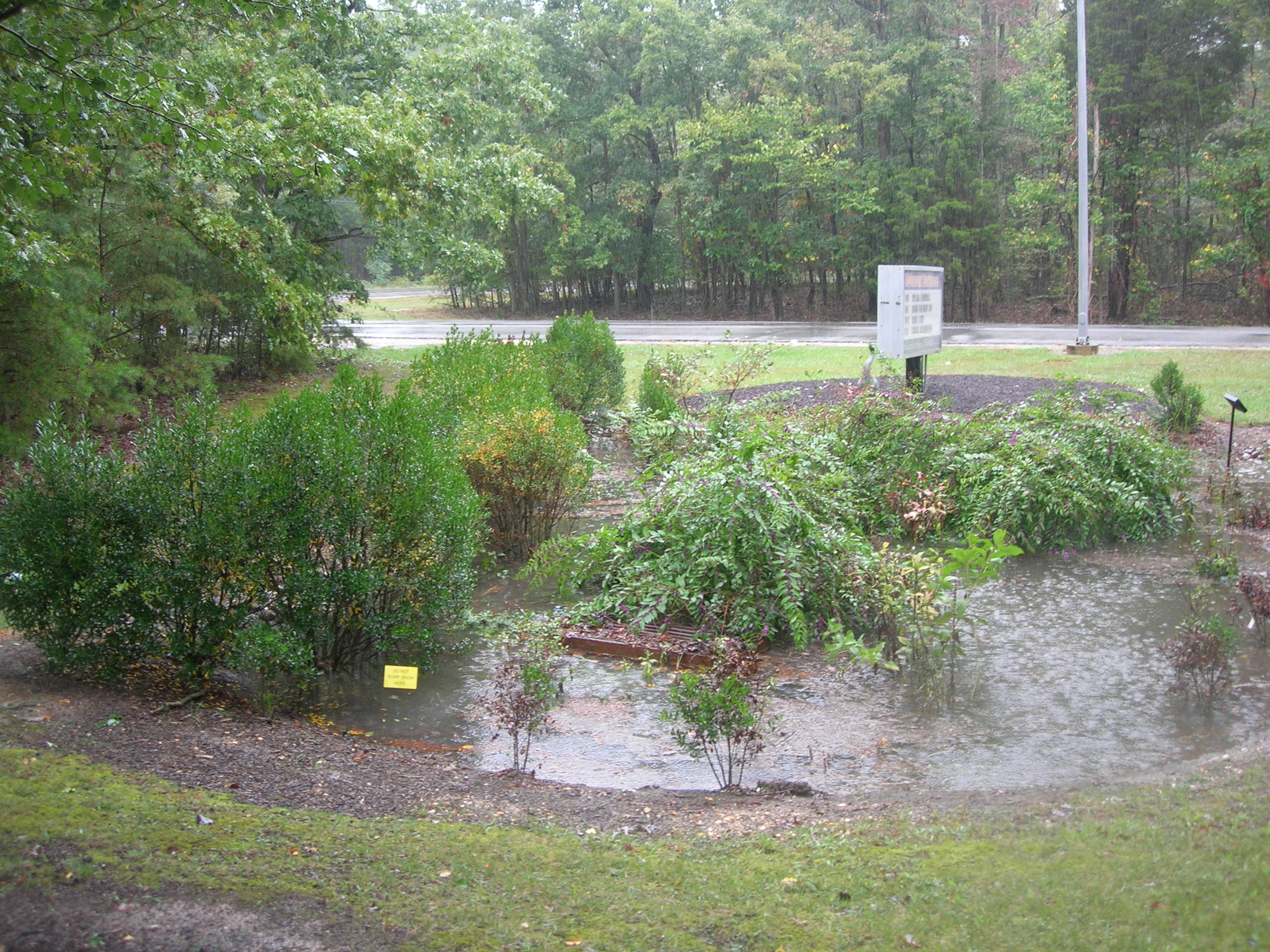 McDonough rain garden absorbing stormwater from the parking lot during the approach of Hurricane Joaquin