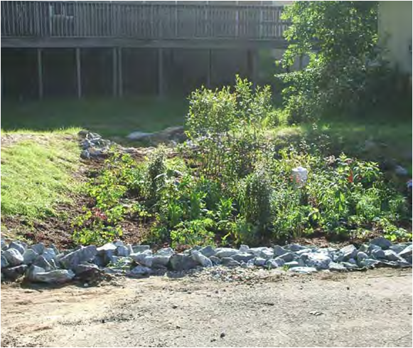 McDonough rain garden 2 after