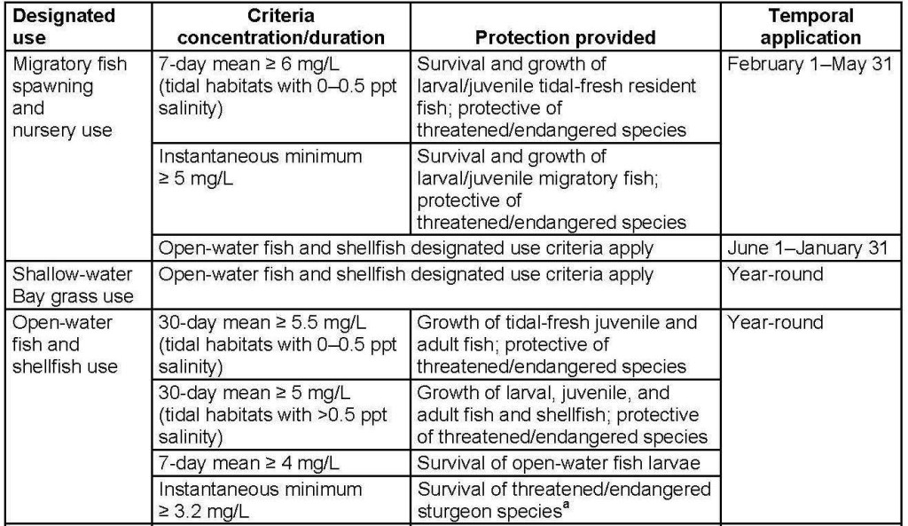 Chesapeake Bay TMDL dissolved oxygen criteria