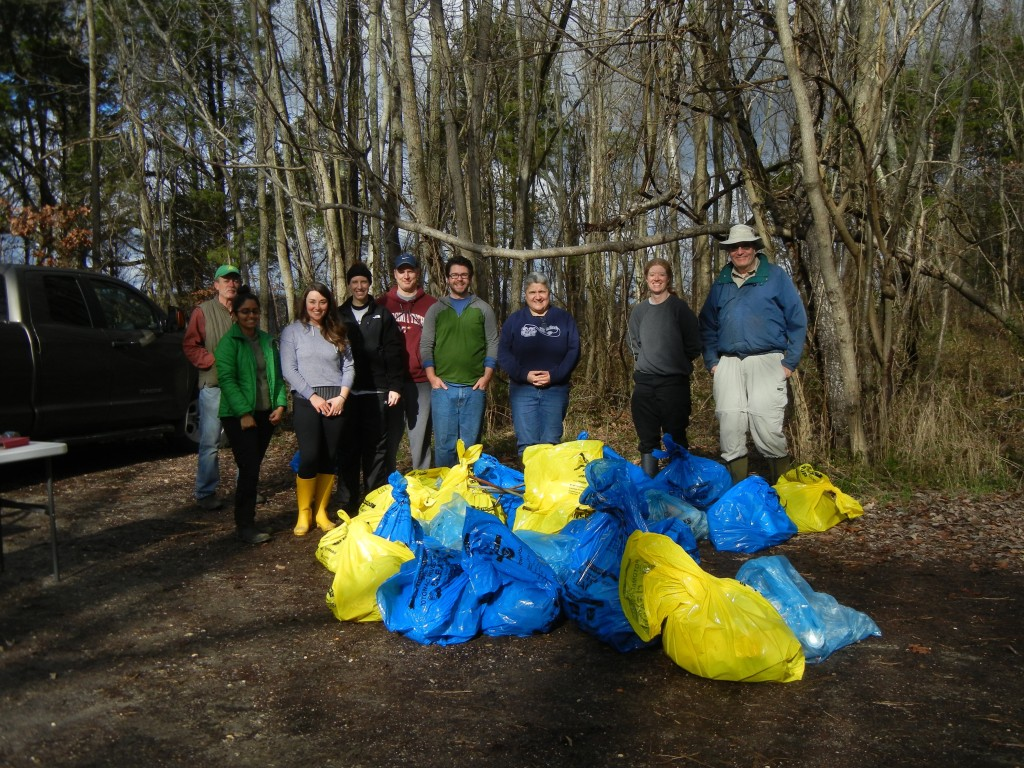 Shoreline cleanup volunteers