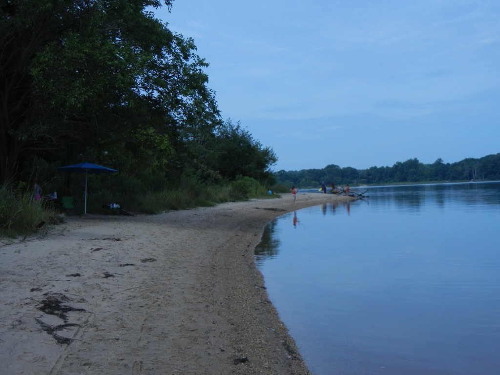 Beach at Chapel Point SP