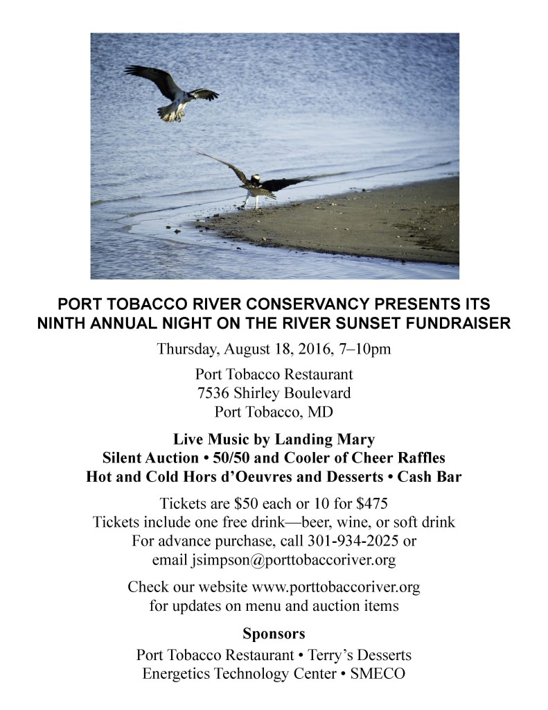 Night on the River Flyer 2016